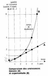 croissance_lineaire_ou_exponentielle.jpg